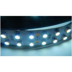 Elite LED páska SMD3528, studená bílá, 24V, 1m, 240 LED/m