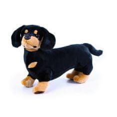 Rappa plyšový pes jezevčík, 45 cm (od 0 let)