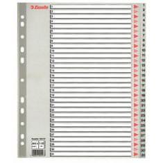 Esselte Plastový rozraďovač 1-31 maxi sivý