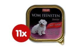 Animonda mokra hrana za mlade pse Vom Feinsten, govedina + piščanec, 11x150g