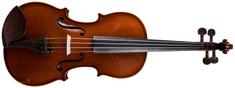 Strunal  SCHÖNBACH Violin Bologna 333w 4/4