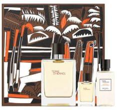 Hermès Terre D´ Hermes - EDT 100 ml + sprchový gel 40 ml + EDT 5 ml