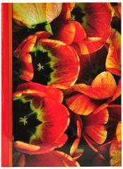 Tradag Fotoalbum červené tulipány
