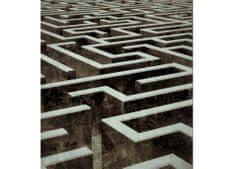 Dimex Fototapeta MS-3-0279 Labyrint 225 x 250 cm