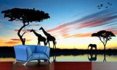 IMPAR SUBLIMACE Fototapeta Afrika