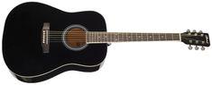 Blond Lily Akustická kytara