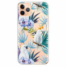 iSaprio Silikonové pouzdro - Parrot Pattern 01 - iPhone 11 Pro Max