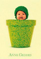 Anne Geddes Blahopřání , Blahopřání malé, ECI - květináč na zeleno