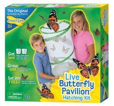 Insect Lore Motýlí pavilón (6-10 housenek) - Butterfly Pavilion