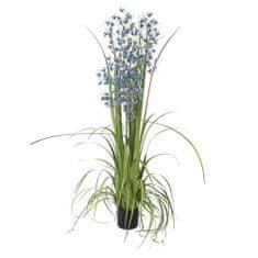 Europalms Orchidea trávna , Výška 140 cm/modré kvety