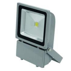 Eurolite Reflektor , LED IP FL-100 COB 6400K 120°