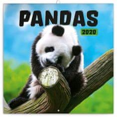 Poznámkový kalendář Pandy 2020