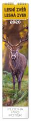 Nástěnný kalendář Lesní zvěř – Lesná zver 2020