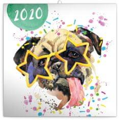 Poznámkový kalendář Kamarádi z akvarelu 2020