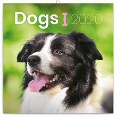 Poznámkový kalendář Psi 2020