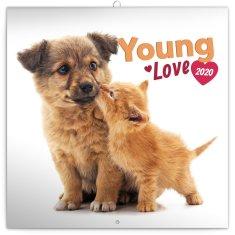 Poznámkový kalendář Young Love 2020
