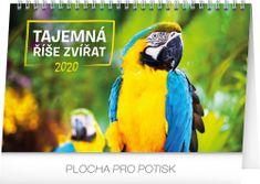 Stolní kalendář Tajemná říše zvířat CZ 2020, 23,1 x 14,5 cm
