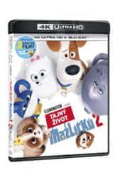 Tajný život mazlíčků 2 (2 disky) - Blu-ray + 4K Ultra HD