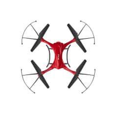 Acme Immortal dron