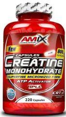 Amix Nutrition Creatine Monohydrate 500kapslí