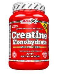 Amix Nutrition Amix Creatine Monohydrate 1000g