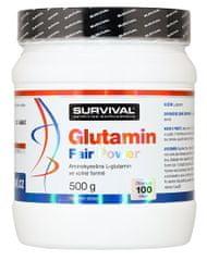 Survival Glutamin Fair Power 500g