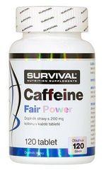 Survival Caffeine Fair Power 120tablet