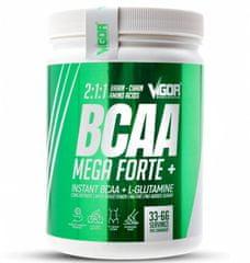 Vigor Nutrition BCAA Mega Forte + Glutamin 500 g