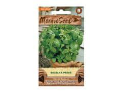 MORAVOSEED Bazalka pravá zelená