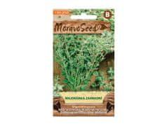 MORAVOSEED Majoránka zahradní