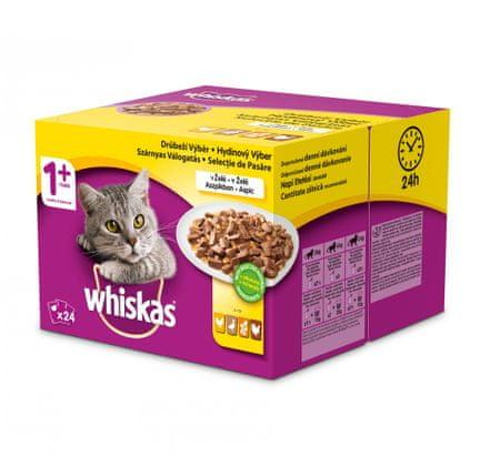 Whiskas hrana za mačke Perutnina v želeju BONUS, 24 kosov