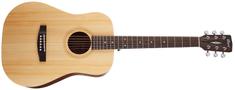 Cort Earth 50 OP Akustická kytara
