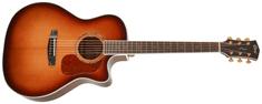 Cort Gold-A8 LB Elektroakustická kytara