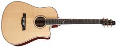 Seagull Artist Mosaic EQ CW HG EQ Elektroakustická kytara