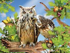 SunsOut Puzzle 500 dílků XXL dílků - Owl Always Love You