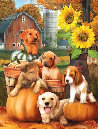 SunsOut Puzzle 300 db XXL db - Autumn Puppies