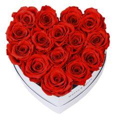 Notta & Belle Červená kytice «Love» v bílé krabičce - 15 ks
