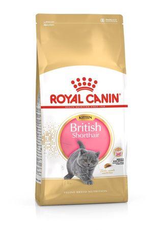 Royal Canin British Shorthair Kitten hrana za mladiče britanske kratkodlake mačke, 10 kg