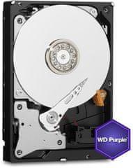 Western Digital WD WD82PURZ Purple - 8TB