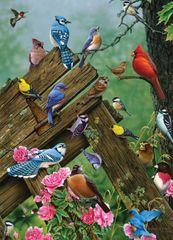Cobble Hill Puzzle Lesní ptáci 1000 dílků