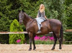 Allegria 2 hodiny ve světě koní