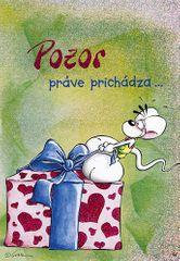 Diddl & Friends Blahopřání Diddl a jeho přátelé, Pozor práve prichádza…