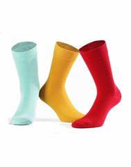 Gemini Pánské ponožky W94.N03 - Wola