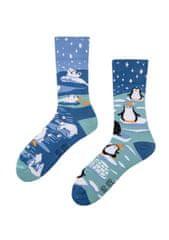 Spox Sox Ponožky Spox Sox Antarktida