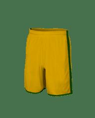 PENALTY Šortky NAZIONALE gold - green