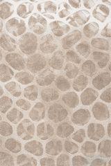 Sintelon AKCE: 120x170 cm Kusový koberec Vegas 03/EOE
