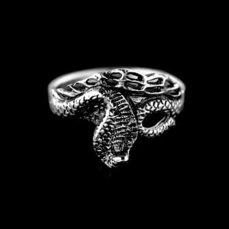 Amiatex Pierścionek srebrny 15238, 54