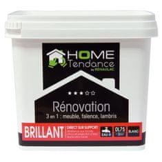 Home Tendance renovační barva 3v1 0,75 L, bílá