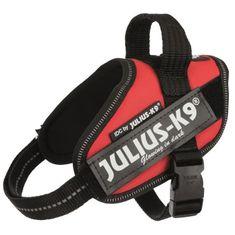 Julius K9 postroj Power mini - červený