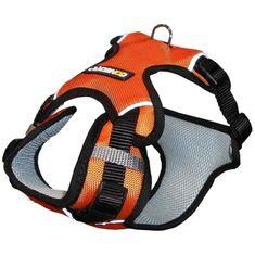 NUM'axes sportovní postroj pro psa Coneck'T - S, oranžová